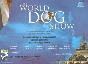 world dog show certificate for devonias altivita